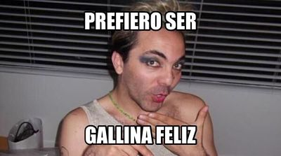 gallinafeliz