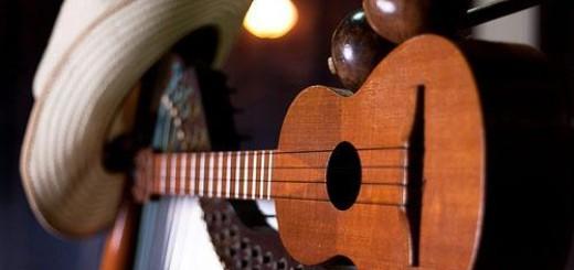 Música LLanera | Fotos de Referencia