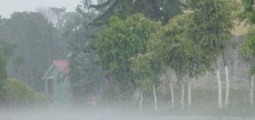 Paso de Onda Tropical |Imagen de referencia