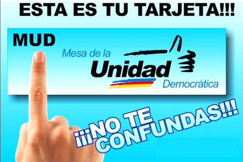 mud-mesa-unidad-democratica-parlamentarias