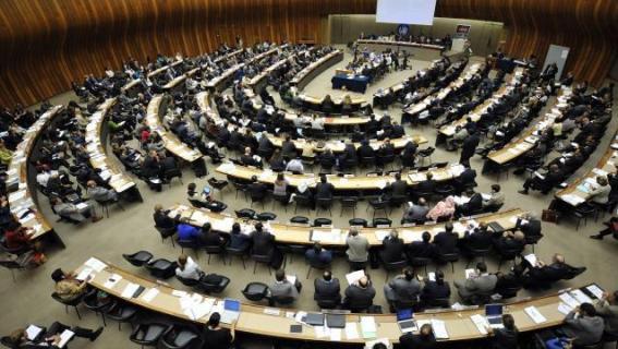 Organización de Naciones Unidas / Imagen Referencial