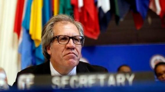 Almagro, Secretario general de la OEA