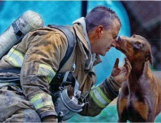 Bombero salva a perrita con respiración boca a boca