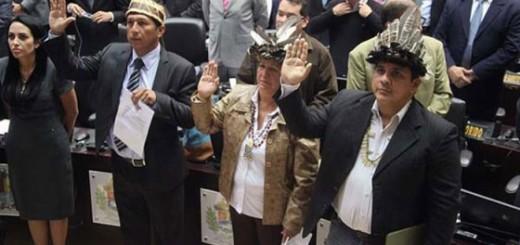 Diputados de Amazonas |Foto: archivo