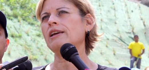 Diputada Adriana D´Elia. Imagen referencial