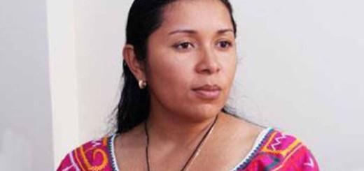 Diputada Aloha Nuñez- Imagen referencial