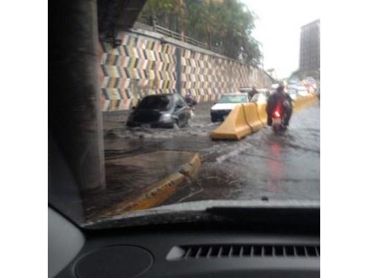 Avenida Libertador/Crédito: Venevisión