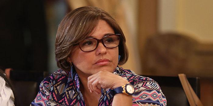 Ministra de Salud, Luisana Melo| Foto: Archivo