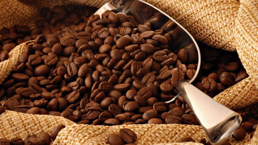 Granos de café |Imagen de referencia