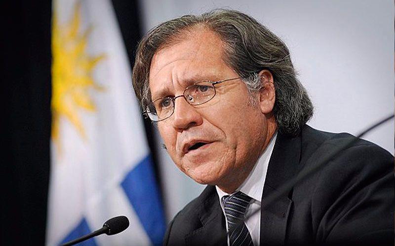 Image result for Luis Almagro, secretario general de la OEA