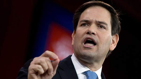 Marco Rubio, Senador de Florida |Foto referencia