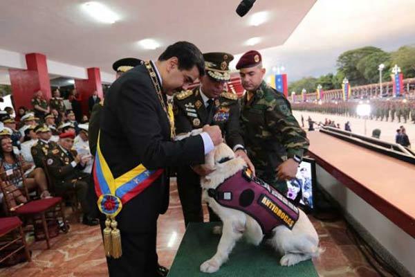 Nicolás Maduro ascendió a dos perritos antidrogas de la GNB|Foto: PresidencialVen