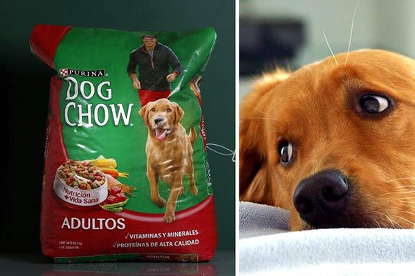 """Precio 2usto"""" de la perrarina Dog chow  Foto: Reuters"""