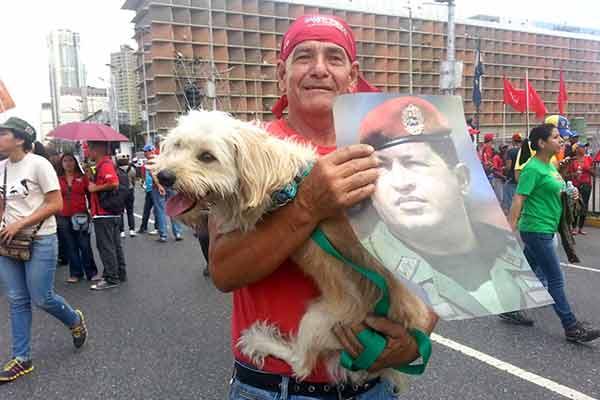 Perro en la marcha chavista