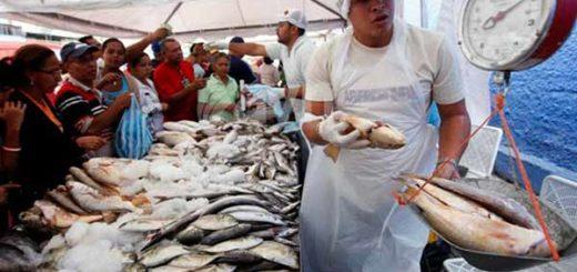 Pescadores deberán aporta 5% de su captura