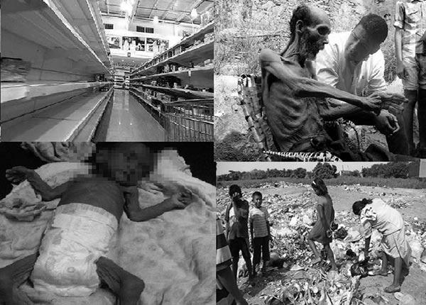 La realidad de Venezuela en el Día de la Alimentación |Composición: Notitotal