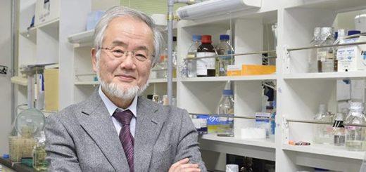 Yoshinori Ohsumi gana premio Nobel de Medicina | Foto: Archivo