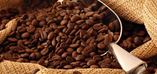 graos-de-cafe-divulgacao
