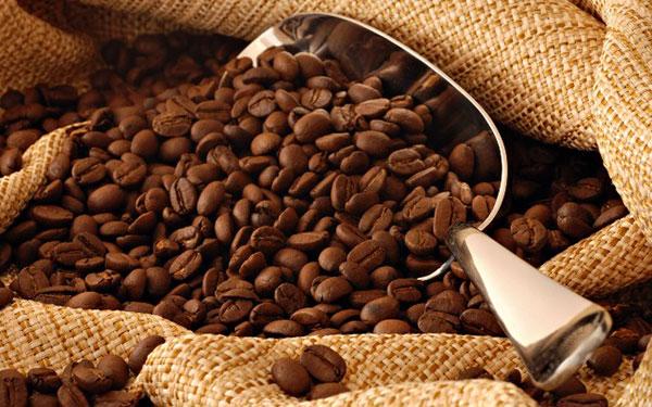 Calentamiento global amenaza la producción de café en Venezuela | Foto referencial