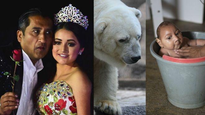 Las historias de América Latina que se hicieron virales en 2016 gracias a Internet | Foto: AP/GettyImages/BBCMundo