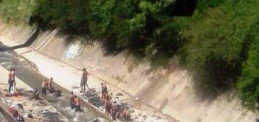 Ahora no solo se bañan en el Guaire sino que buscan comida |Foto: @Imag3n