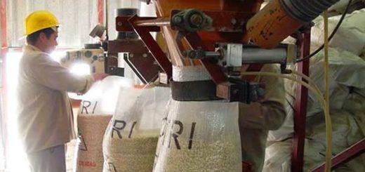 Fetraharina-afirma-que-este-jueves-se-cerró-otro-molino-de-trigo