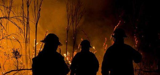 Incendios en Chile |Foto: Agencia Uno