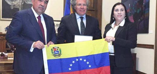 Diputada Larissa González se reúne con secretario de la OEA, Luis Almagro |Foto: Twitter