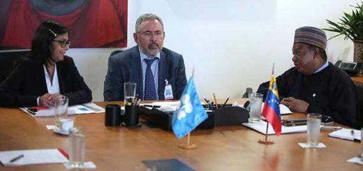 Nelson Martínez, Ministro del Petróleo se reúne con  Mohammed Barkindo |Foto: Cancillería de Venezuela