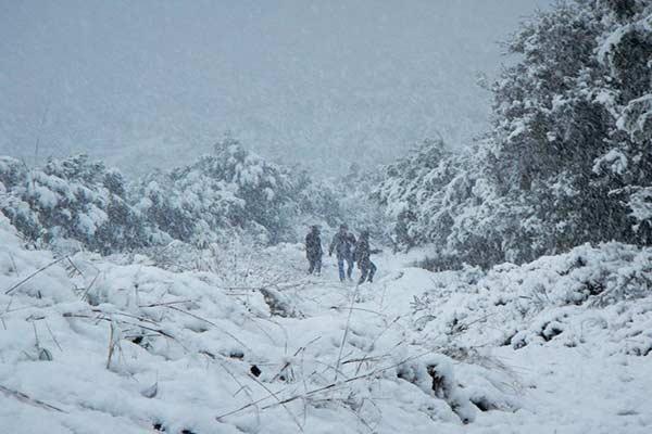 Ola de frío en Grecia paraliza gran parte de la nación |Foto: EFE