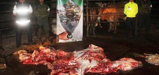 Desmantelado matadero en Cúcuta con ganado venezolano | Foto: El Nacional