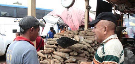 Venezolanos sortean el hambre con tubérculos |Foto: La Patilla