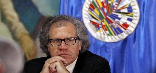 Luis Almagro, Secretario general de la OEA, aboga por la Carta Democrática | Foto cortesía
