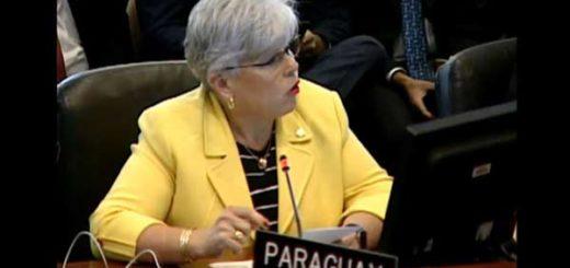 Representante de Paraguay en la OEA |Foto cortesía