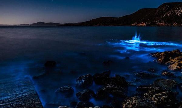 Playa de Australia se ilumina de azul neón | Foto:  Leanne Marshall Instagram
