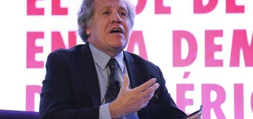 Luis Almagro, secretario General de la OEA |Foto: EFE