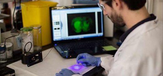 Científicos catalanes crean el primer fotofármaco |Foto: El Periódico