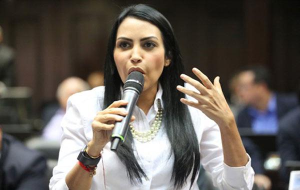 Delsa Solórzano, diputada de la Asamblea Nacional | Foto: Archivo