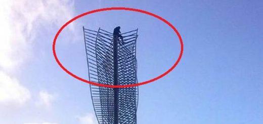 Hombre subió la estructura de la Plaza Diego Ibarra  Foto: Twitter