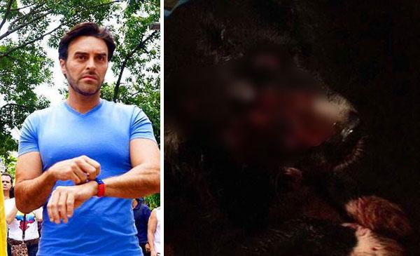 Francisco León repudió ataque a mascota en Los Verdes | Composición
