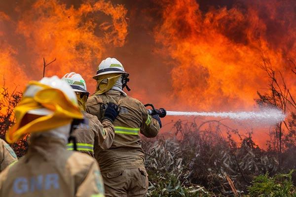 Incendio en Portugal se cobra la vida de más de 60 personas |Foto: EFE