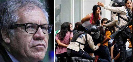 Luis Almagro condena trato a los manifestantes | Fotomontaje Notitotal