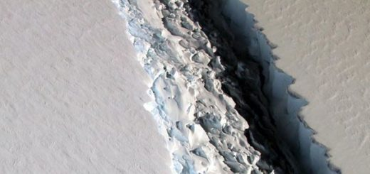 Iceberg gigantesco se desprende de la antártida |  Foto cortesía