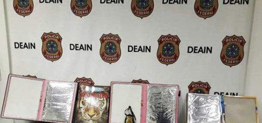 Detenida venezolana por traficar cocaína en libros infantiles | Foto: Policía Federal