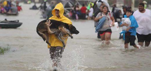 Los ciudadanos han comenzado la  evacuación |Foto AFP