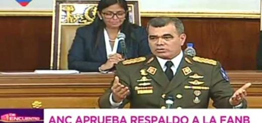 El ministro de Defensa, Vladimir Padrino López | Captura de video