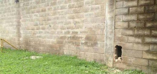 Por este agujero habrían salido los presos |Foto. Dayrí Blanco