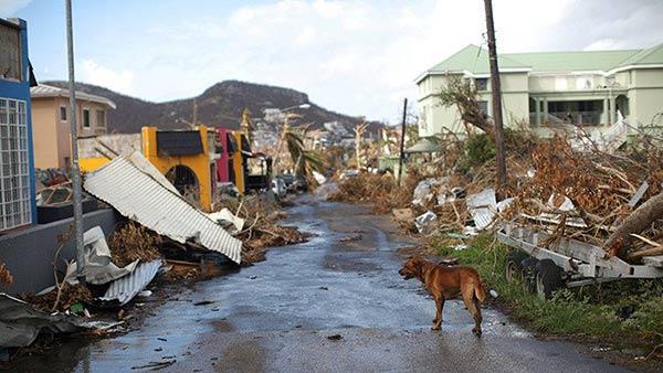Son incalculable los destrozos en Dominica  Foto: RT