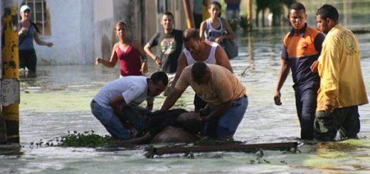 El hombre intentaba auxiliar a vecinos de parapal |Foto: Twitter