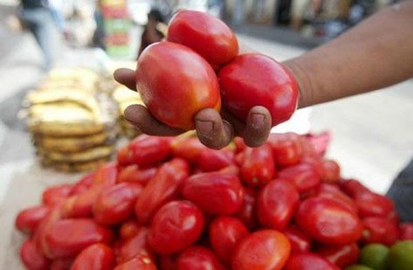 Se necesitan tres días de sueldo mínimo para comprar un kilo de tomates   Foto referencial